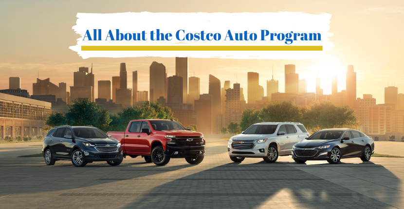 All About the Costco Auto Program